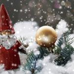 コストコクリスマス[today_date_h]!チキンとケーキ予約方法と混雑回避法教えます!
