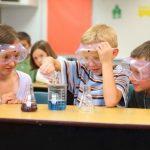 中学生の簡単1日で出来る自由研究実験テーマ『DNAを取り出してみよう』