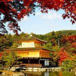 紅葉情報2017京都特集!京都の紅葉と言えばココでしょ!