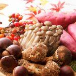 秋の味覚ランキング!野菜に魚にきのこと秋の味覚狩りを家族で楽しもう!