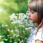 秋の花の漢字を使った子供の名前特集!漢字一文字も人気♪